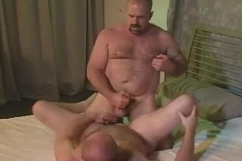 gay Bear asshole licking pounding And oral pleasure