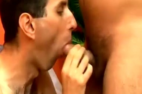 doggy style butthole plowing