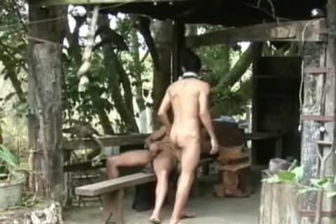 attractive Cowboys Have Barnyard ass Session