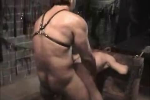 Very pretty lad Locked In Stocks And pounded By Dungeon taskmaster