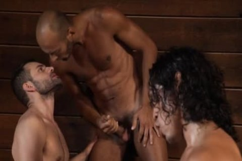 Latin Wolf wazoo To mouth With cumshot