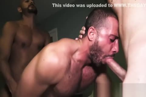 Fabulous Adult video Homo bare Newest Show