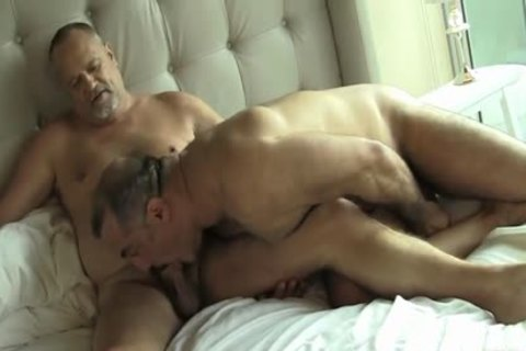 Two horny Daddy Bears gay Sex
