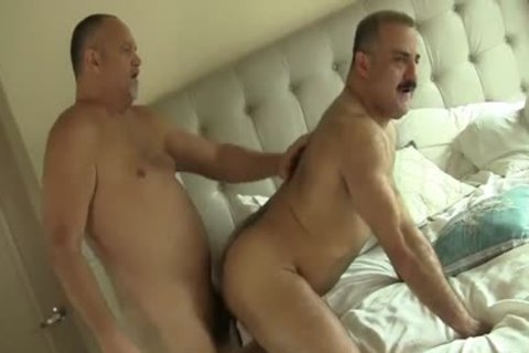Two delicious Daddy Bears homosexual Sex
