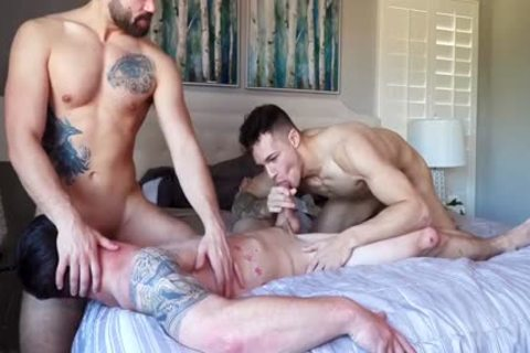 Three WAY! tasty College Males Have amazing homo Sex. tasty video