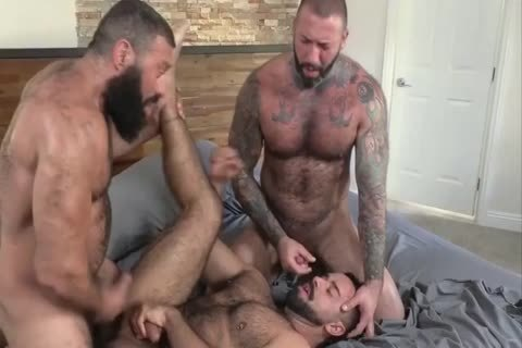 3 Muscle Hard Sex